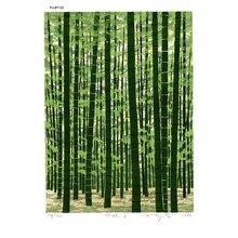 Fujita, Fumio: CHIKURIN D (Bamboo Bush D) - Asian Collection Internet Auction