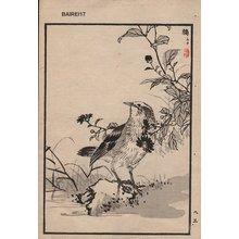 Kono Bairei: One album page - Asian Collection Internet Auction