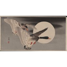 Shoson Ohara: Two mallards and moon - Asian Collection Internet Auction