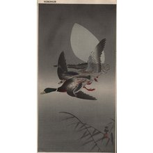 Shoson Ohara: Mallards and moon - Asian Collection Internet Auction