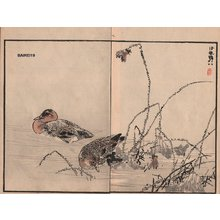 Kono Bairei: Ducks, two album pages - Asian Collection Internet Auction