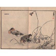 Kono Bairei: Ducks, two album pages - Asian Collection Internet Auction