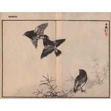 Kono Bairei: Black birds, two album pages - Asian Collection Internet Auction