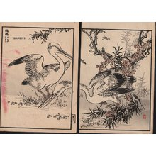 Kono Bairei: Egrets, two album pages - Asian Collection Internet Auction
