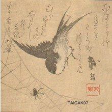Katsukawa Taigaku: Swallow and spider - Asian Collection Internet Auction