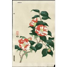 Ito, Nisaburo: Camellia - Asian Collection Internet Auction