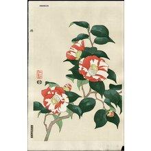 Ito, Nisaburo: Camellia - Asian Collection Internet Auction