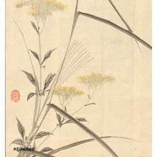 今尾景年: Autumn flowers - Asian Collection Internet Auction