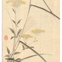 Imao Keinen: Autumn flowers - Asian Collection Internet Auction