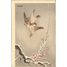 Shoson Ohara: Sparrows display above snow covered plum - Asian Collection Internet Auction