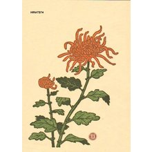 Hiratsuka, Unichi: Chrysanthemum - Asian Collection Internet Auction