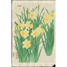 Ito, Nisaburo: Dafffodil - Asian Collection Internet Auction