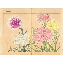 Tanagami, Konan: Carnation - Asian Collection Internet Auction