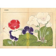 Tanagami, Konan: Gloxinia - Asian Collection Internet Auction