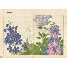 Tanagami, Konan: Delphinium - Asian Collection Internet Auction