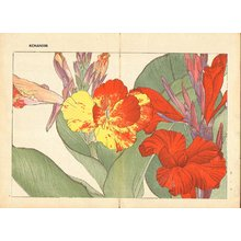 Tanagami, Konan: Canna - Asian Collection Internet Auction