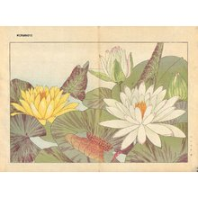 Tanagami, Konan: Nimphaea - Asian Collection Internet Auction