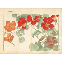Tanagami, Konan: Nasturtium - Asian Collection Internet Auction