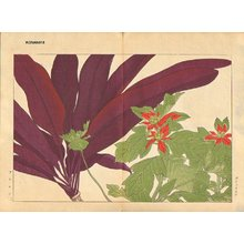 Tanagami, Konan: Poinsettia and Dracaena - Asian Collection Internet Auction