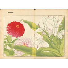 Tanagami, Konan: Zingiber and Zinnia - Asian Collection Internet Auction