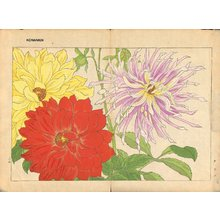 Tanagami, Konan: Dahlia - Asian Collection Internet Auction