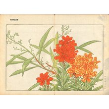 Tanagami, Konan: Wall Flower - Asian Collection Internet Auction
