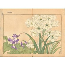 Tanagami, Konan: Scilla and Violet - Asian Collection Internet Auction