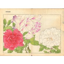 Tanagami, Konan: Rose - Asian Collection Internet Auction