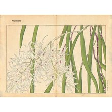 Tanagami, Konan: From Oya - Asian Collection Internet Auction