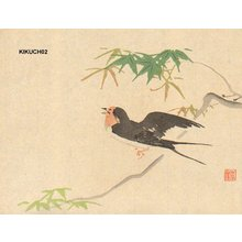 Kikuchi, Hobun: Swallow on maple - Asian Collection Internet Auction