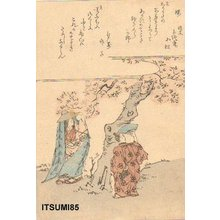Itsumi, Isshin: Viewing cherry blossom - Asian Collection Internet Auction