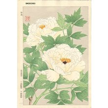 Kawarazaki, Shodo: Tree peony - Asian Collection Internet Auction