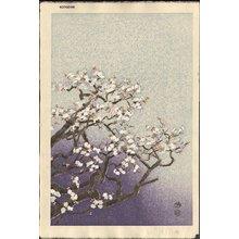 Kotozuka Eiichi: Cherry Blossoms - Asian Collection Internet Auction